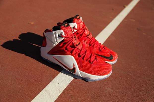"NIKE LEBRON 12 ""HRT OF A LION"""